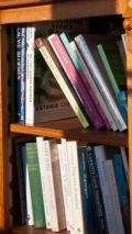 Nederlandse en Vertaalde Boeken